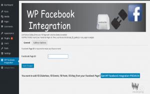 wordpress fb integration configuration screen