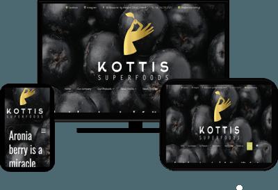 Aronia Kottis Greek Distributor - Woocommerce Eshop Building